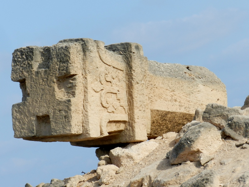 Inside DNA of Salalah-Dhofar A Tourist Guide